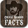Chuck Norris Facts - 1.0